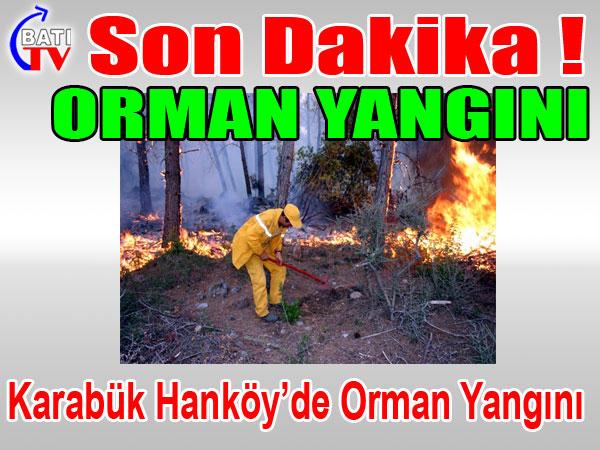 Karabük Hanköy'de Orman Yangını